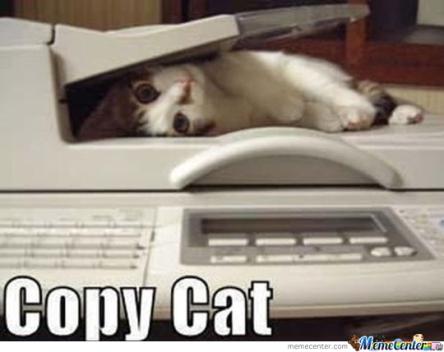 copy-cat_o_233889